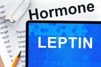 leptin-diaet.jpg